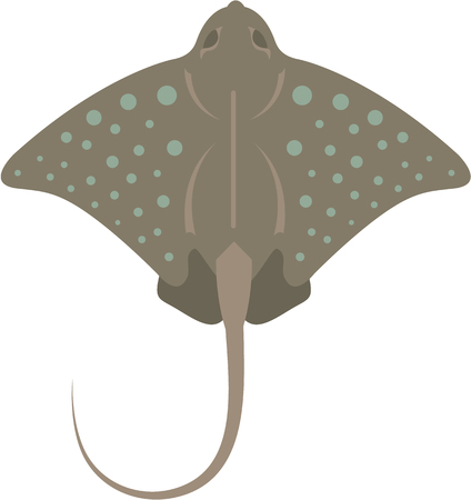 Sting ray vector illustration clip-art image Illustration