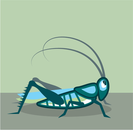 Grasshopper vector illustration clip-art image