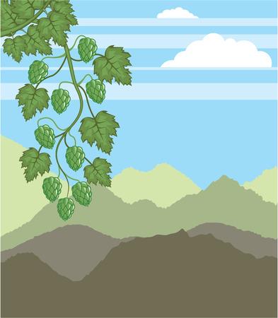 hopfield: Hops green vector illustration clip-art image