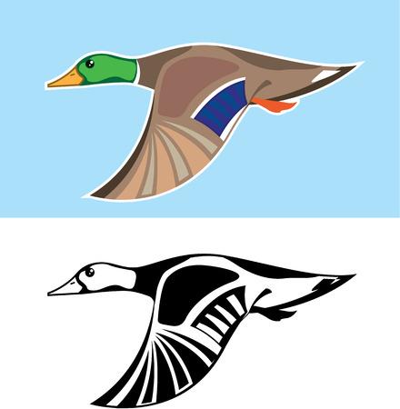 Flying Duck vector color outline illustration clip-art image Иллюстрация