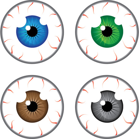 eye ball: Eye ball colors vector illustration clip-art image