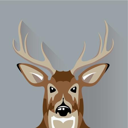 Buck animal deer vector illustration clip-art image Illustration