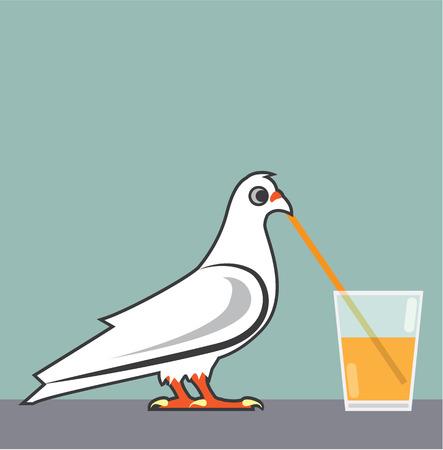sipping: Bird Drinking drink vector illustration clip-art image