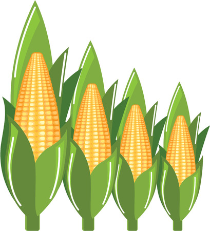 Corn sweet corn illustration clip-art image