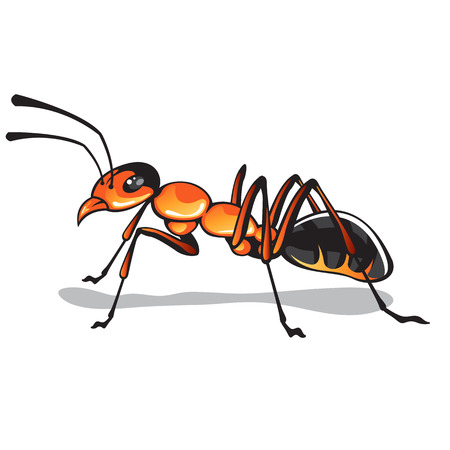 injurious: Ant vector fire ant bug illustration clip-art