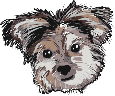 Yorkie dog vector clip-art image illustration