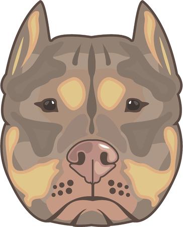 Pitbull illustration clip-art image file Stock Photo