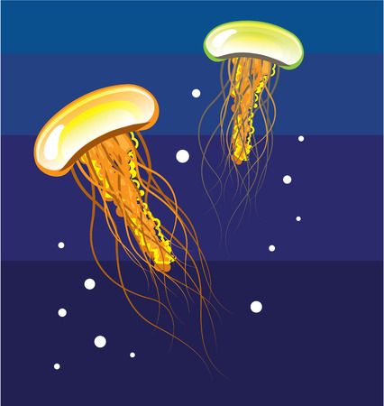 Jellyfish illustration clip-art image Stock Photo