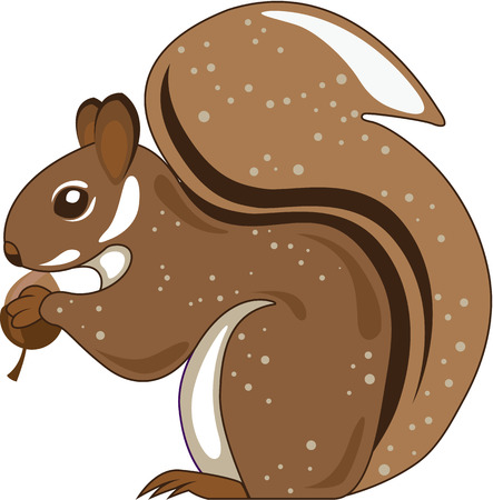 Squirrel isolated artwork illustration clip-art Stock Photo