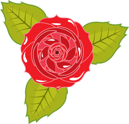 Rose illustration clip-art image artwork