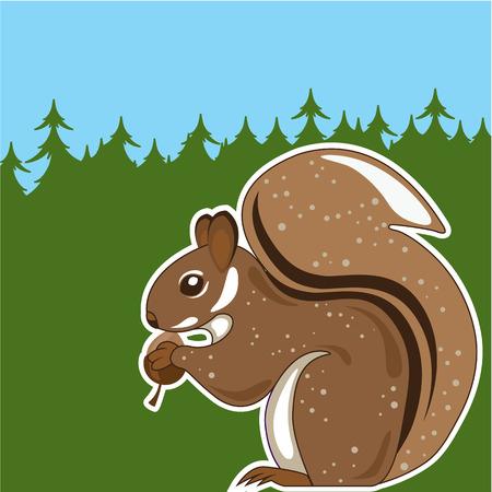 Squirrel forest  illustration clip-art image