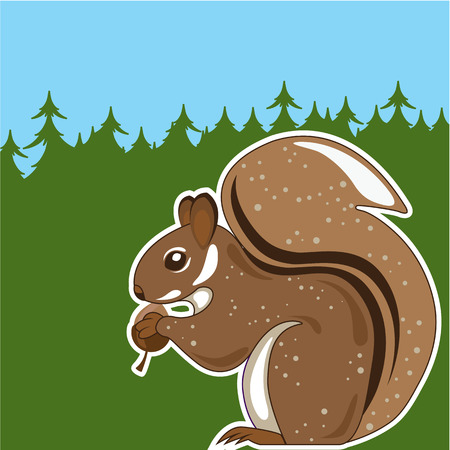 Squirrel forest  illustration clip-art image