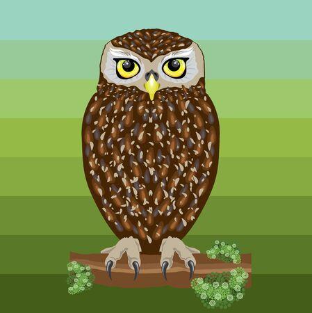 cute owl illustration Illustration