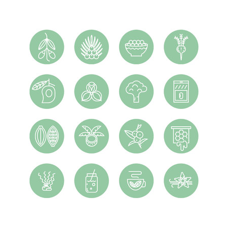 Superfoods Linie Vektor Symbole. Standard-Bild - 72362009