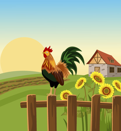 Morning in village with rooster Illustration