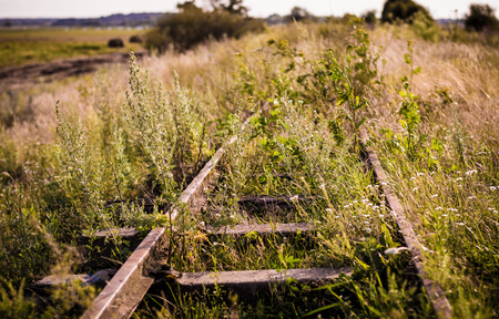 Overgrown with grass old rails, the outgoing the horizon.