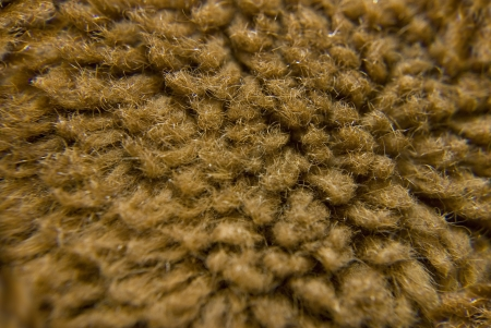 villi: brown fur wool under microscope at laboratory Stock Photo
