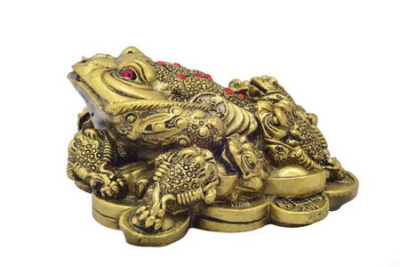 magic Feng Shui money frog for money