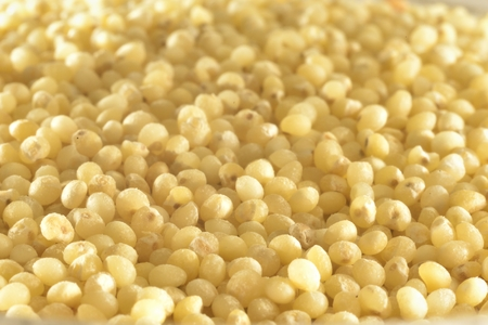 zoomed: macro zoomed yellow millet