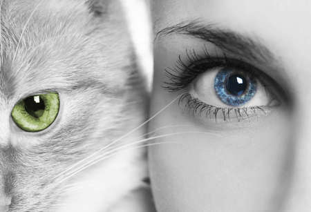 woman with blue eyes and cat with green eyes Stock Photo