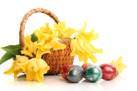 Easter colored eggs and yellow tulips in grass Stock Photo