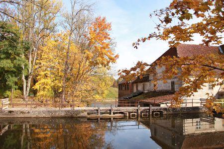 beautiful landscape with bright autumn park photo