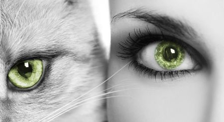 cat head: woman and cat with green eyes Stock Photo