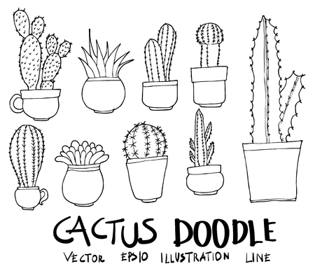 Set of Cactus illustration Hand drawn doodle Sketch line vector