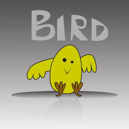 little bird: little bird