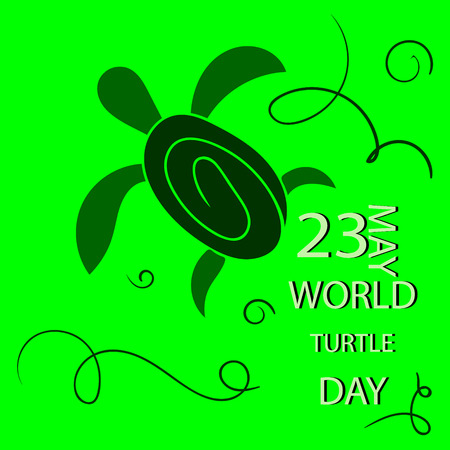 green day baby blue background: Vector illustrator for World Turtle Day with green background.