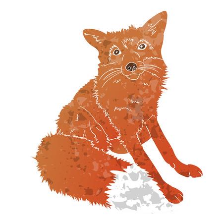foxy: Fox isolated texturized on white background. Illustration
