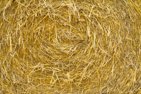 role: role straw Stock Photo