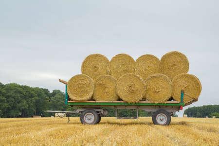 a farm wagon with straw with the sky photo