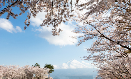 Mountain fuji and Lake ,the most famous place in Japan to traveling.