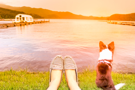A girl and her dog relaxing on a peak during sunset.A girl and her dog (Human and Pets Best Friends) relaxing on the lake  and looking the sun set  in summer ,soft focus and de focused  blurry photo.