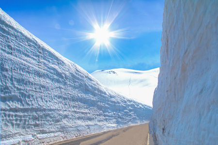 The snow mountains wall of Tateyama Kurobe alpine  with blue sky  background is  one of the most important and popular natural place in Toyama Prefecture, Japan.