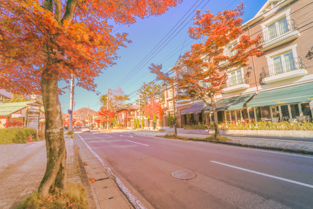 Karuizawa in Autumn ,Karuizawa is a mountain resort town and a shopping street  of Nagano Prefecture, Japan. 写真素材