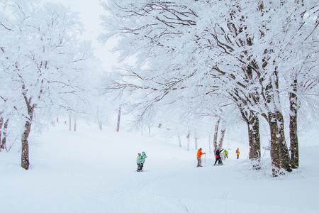 Landscape and Mountain view of Nozawa Onsen in winter , Nagano, Japan.