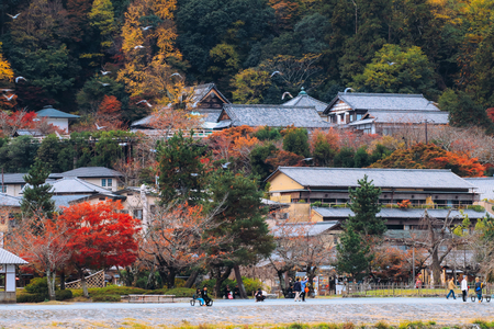 Beautiful Arashiyama old town  in autumn season in Kyoto Japan.
