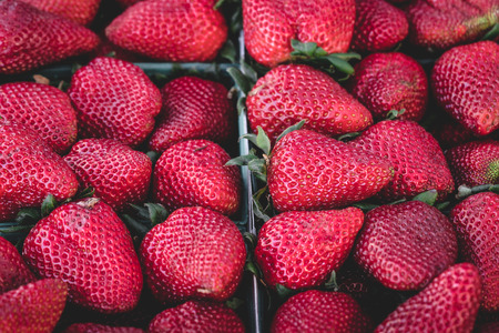 Strawberries, Organic, delicious, beautiful and ripe strawberries set in a box ready for market. 版權商用圖片