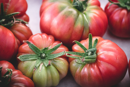 heirloom: organic heirloom tomato, fresh harvest hybrid vegetable ready for sale at the maket