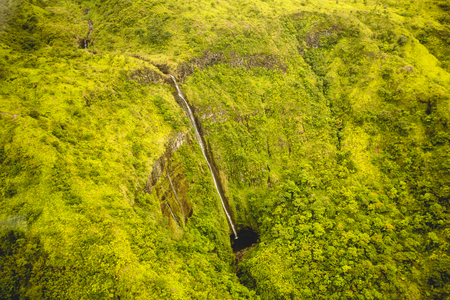 breath taking: Breath taking dramatic waterfall in Maui, Hawaii national park. Dramatic landscape yellow green tropical rain-forest of Maui, Hawaii. Waimoku falls aerial side view.