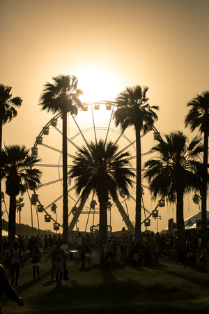 ferris wheel: Palm tree with a ferris wheel background at Santa Monica Pier with black and white and orange colored sunset background Stock Photo