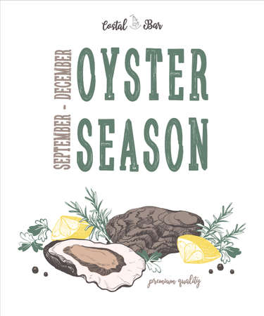 Oyster vector illustration. Vintage typography. Isolated elements for restaurant and cafe menu.