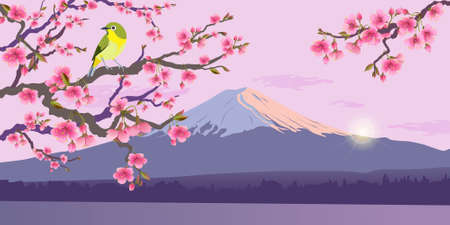Realistic graphics of Uguisu and Sakura on a background of Fuji. Japanese Nightingale on a branch of blossoming cherries.