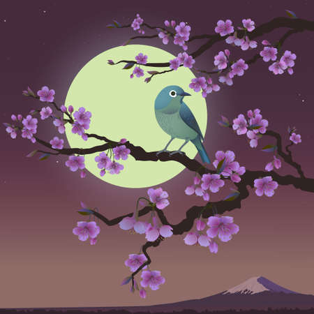 Realistic graphics of Uguisu and Sakura tree on a background of Moon. Japanese Nightingale on a branch of blossoming cherries. Vector illustration of Bush Warbler. Fujiyama mountain at night.