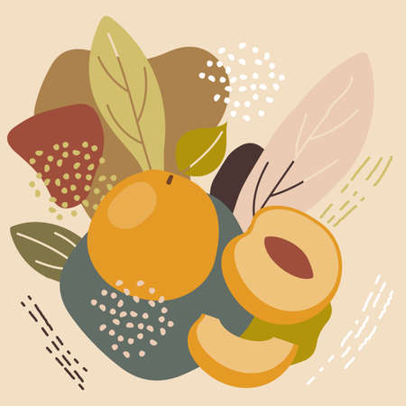 Abstract pastel colors fruit element memphis style. vector illustration of apricot on retro abstract background for organic food packaging, natural cosmetics, vegetarian, vegan products. Illustration