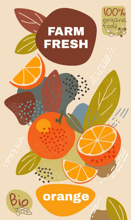 Food label template. vector illustration for organic orange fruit. natural bio fruits package design. ripe orange fruits with abstract memphis style background. eco concept farm fresh label. Illustration