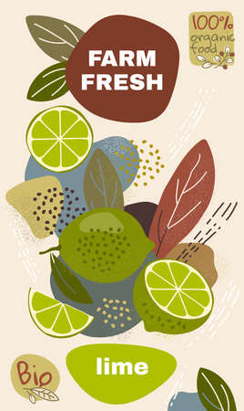 Food label template. vector illustration for organic lime fruit. natural bio fruits package design. ripe lime fruits with abstract memphis style background. eco concept farm fresh label Illustration