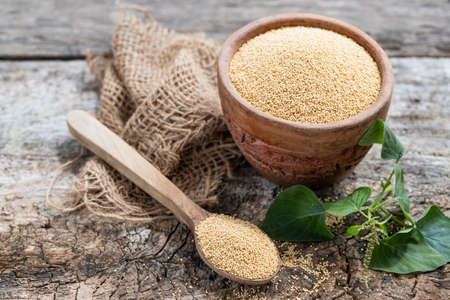 Raw Organic Amaranth Grain in a Bowl witn wooden spoon and Amaranth plant on Rustic wooden background. Healthy colorful gluten free food concept.